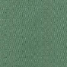 Florida Verde Azulado I 121125
